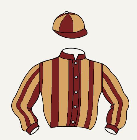 CIUDAD RODRIGO uniforme caballos marrón y rojo