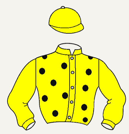 MADRIZ hípica chaqueta amarilla estrellas