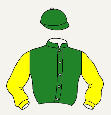 NIJINSKY chaqueta caballos verde y amarilla