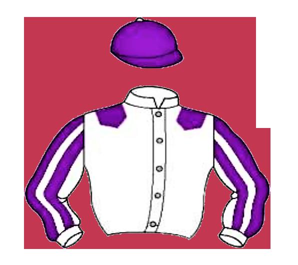 VALLADOLID caballos chaqueta blanca y morada